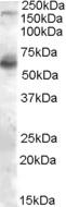EB05259 1
