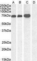 EB05315-T 2